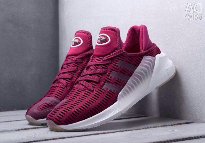 Adidas Climacool (sizes 40-45)