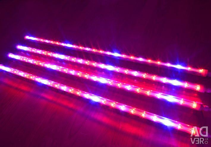 Фіто світильники для рослин під замовлення і наявність.