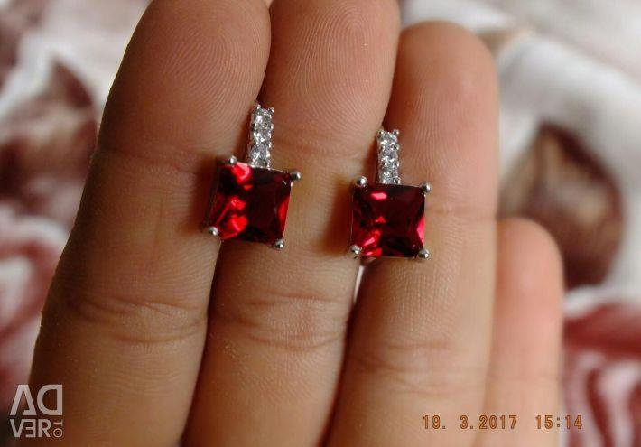Earrings (925 pollination)