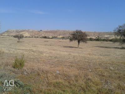 Residential Field in Pyla, Larnaca