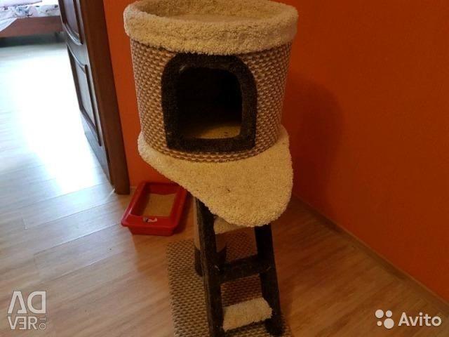 Cat γάτα ξύσιμο
