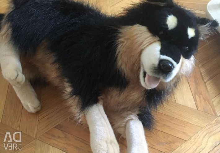 Dog toy is soft