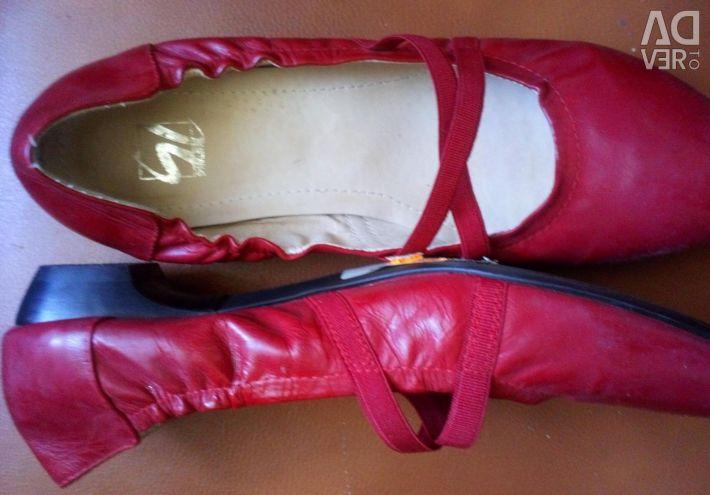 Φύση παπουτσιών. δέρμα
