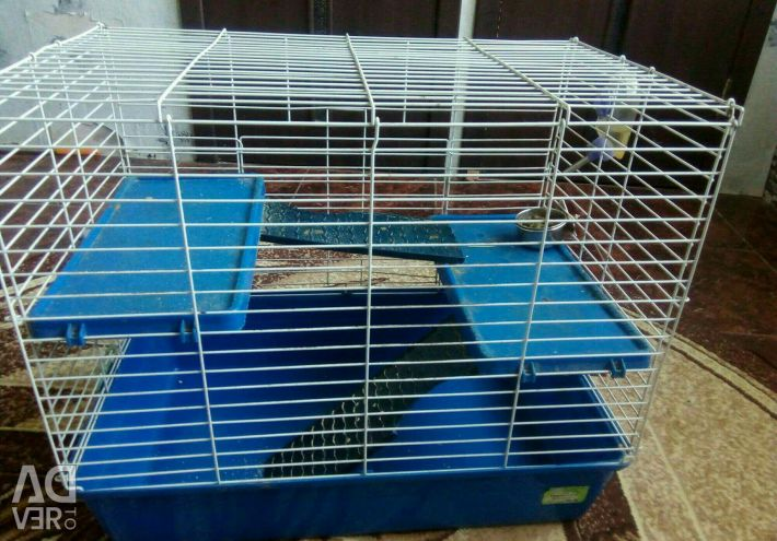 Cages and everything needed by rodents