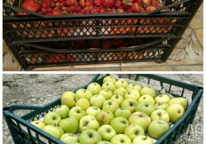 Used boxes for storing fruits and vegetables