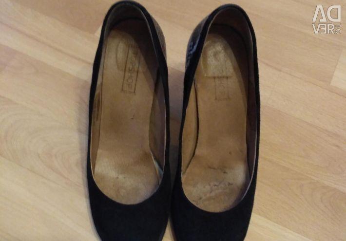 Pantofi de companie TOP SHOP