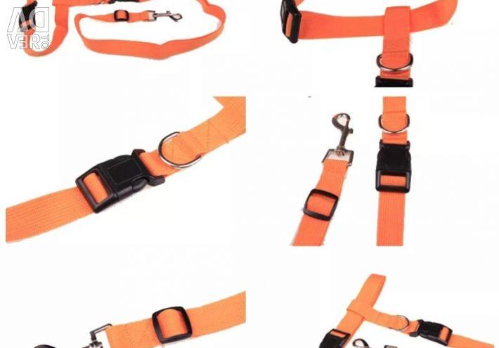 Dog Leash Belt
