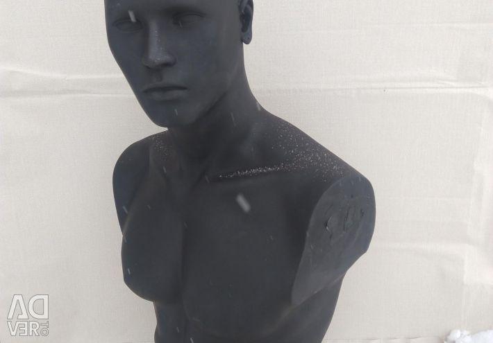 Male torso with head