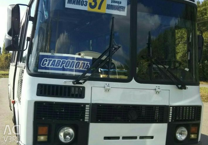 PAZ bus order - passenger transportation