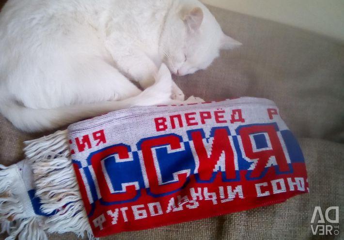 Κασκόλ Ρωσία