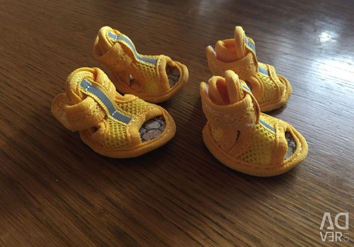 Летняя  обувь  для собак
