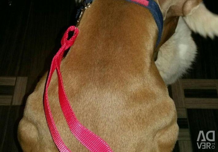 New leash-loop driver