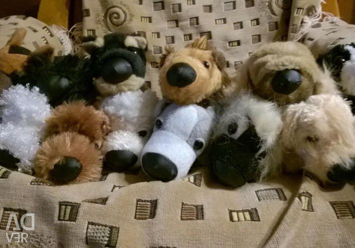 Colecția de câini