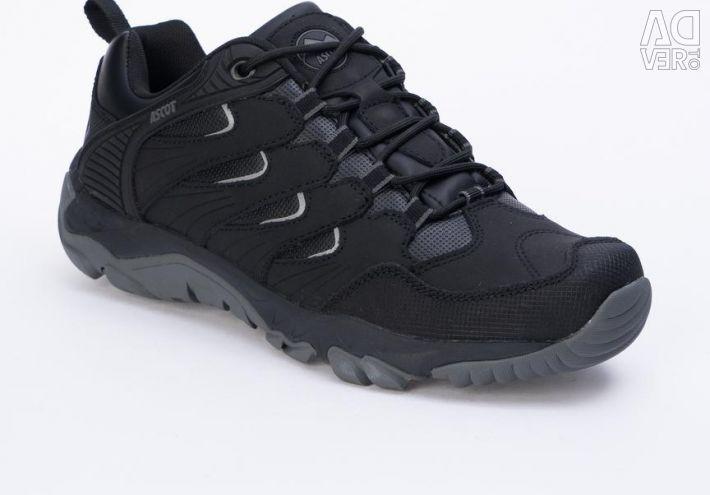 Ascot Sneakers
