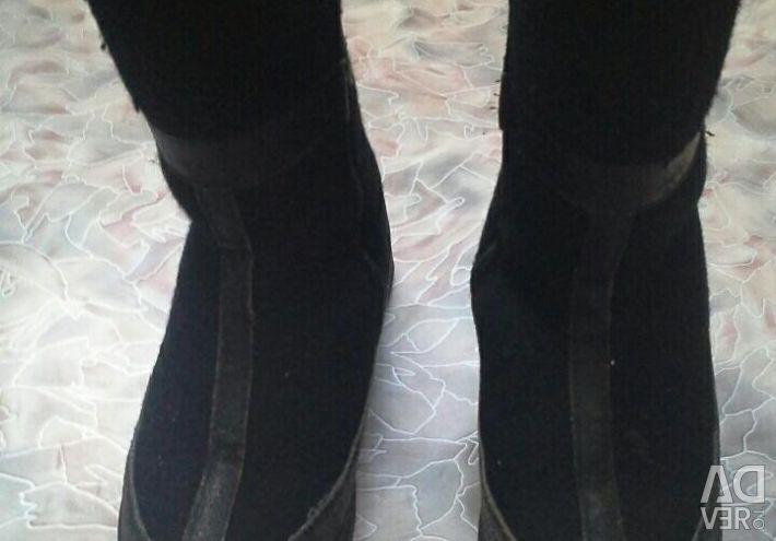 Erkek botları