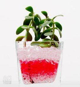 Biogel - substitute for soil