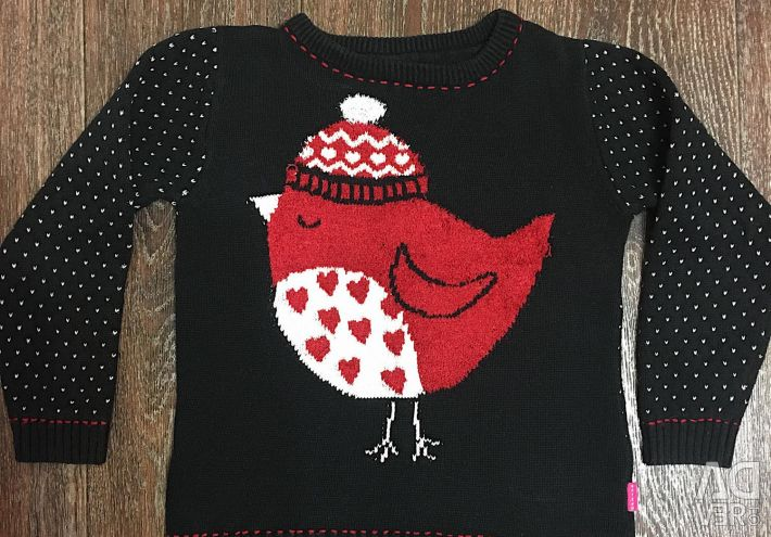 Jumper, sweater with bird