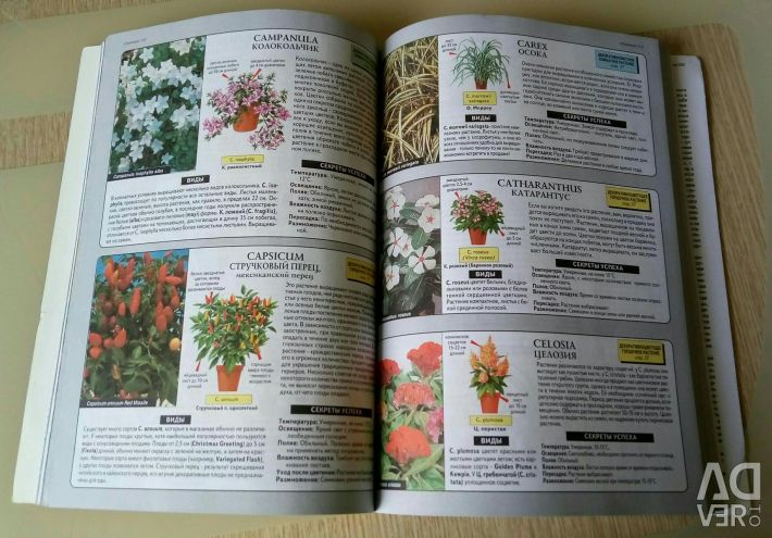 A rare book for lovers of indoor floriculture