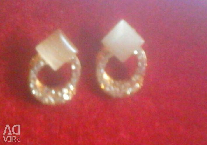 Earrings jewelry