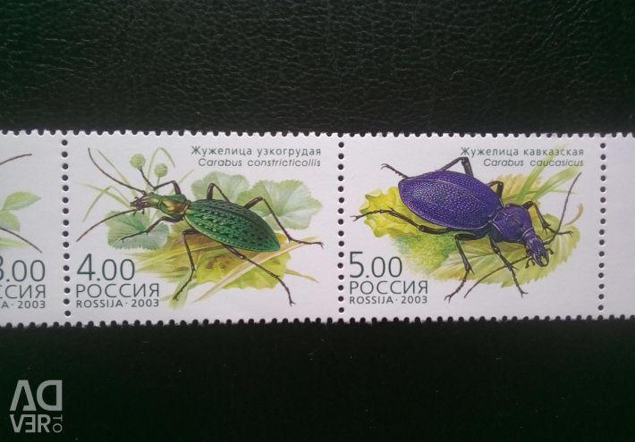 Pullar Rusya 2003. Böcekler