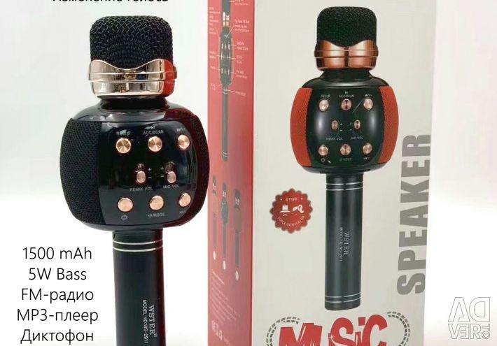 Karaoke Μικρόφωνο Ηχείο φωνής FM Wster WS-2911