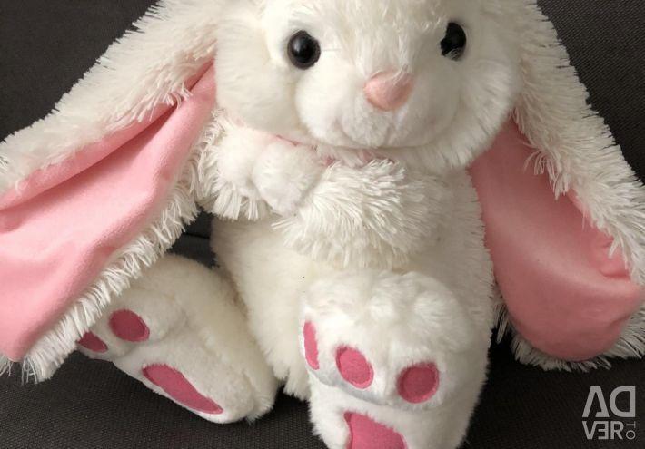 Lovely Hare??