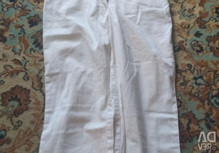 Breeches white