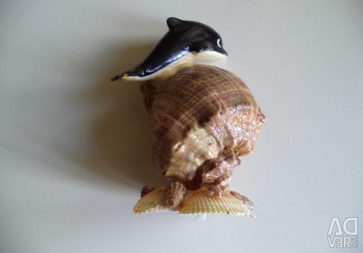 Shell dolphin