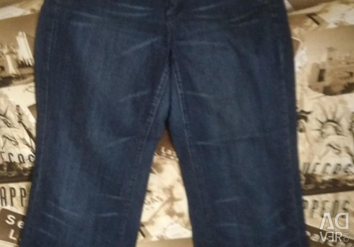 Jeans and breeches