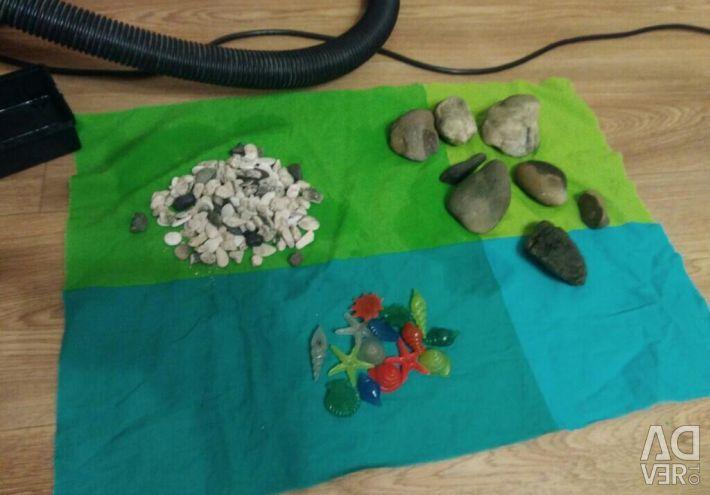 Taşlar ve flüoresan kabukları, denizden kabuk