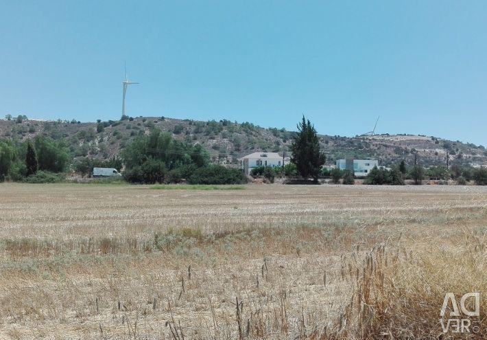 Field in Alethriko, Larnaca