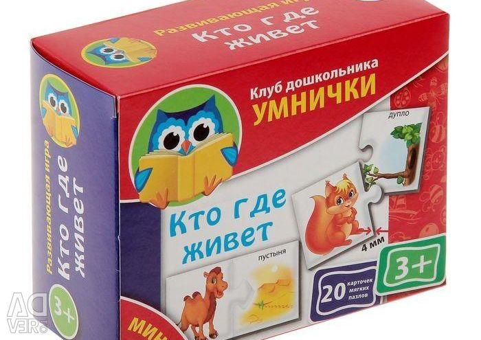 Educational mini-game