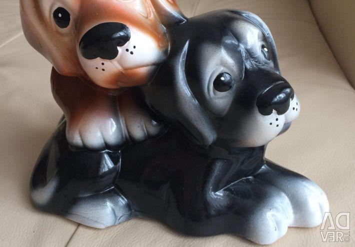 Piggy new doggie
