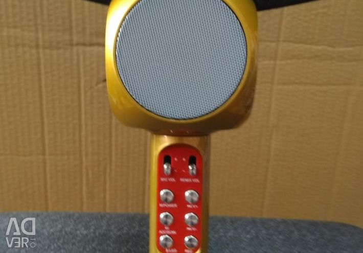 Karaoke mikrofonu Wster WS-1816