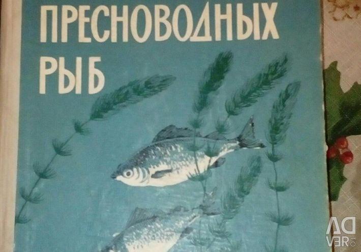 Життя і ловля прісноводних риб