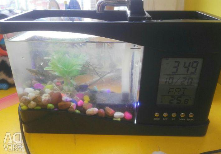 Aquarium organizer