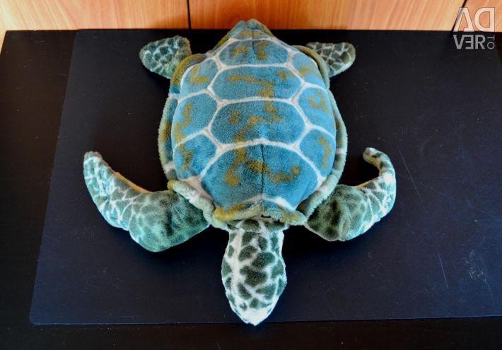 Big green turtle