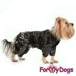 The raincoat is brown (clothes for dogs)