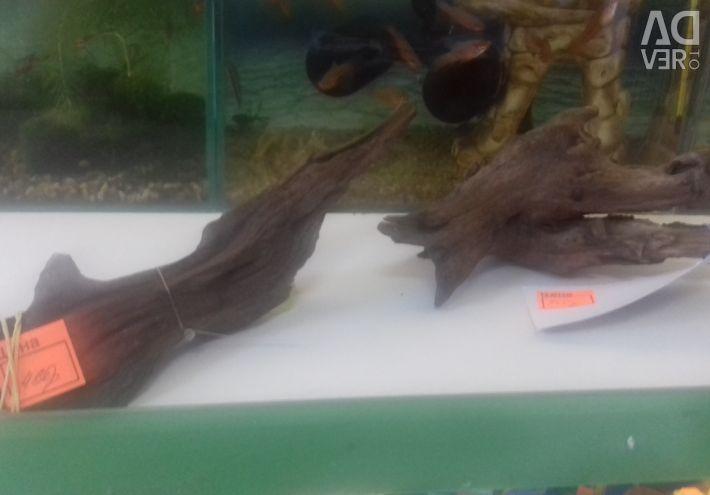 Doğal dalgaların karaya attığı odun UDECO
