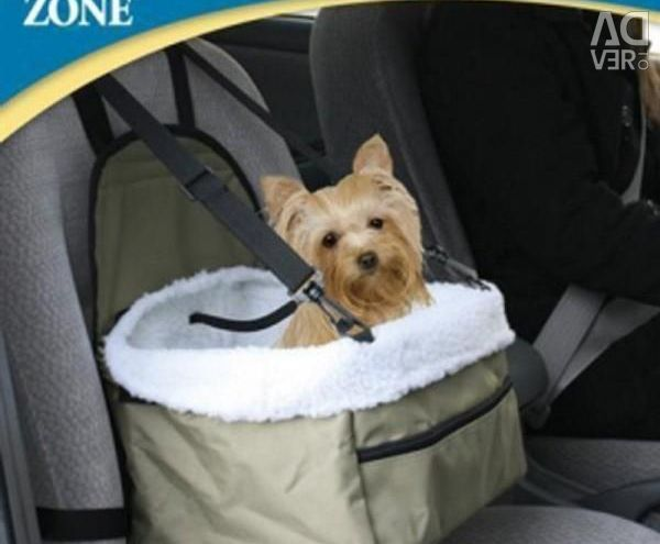 Bag chair for transportation of small dogs and cats