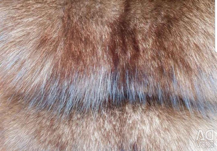 Γούνα πολικής αλεπούς με αγγλικό κολάρο 2 σε 1