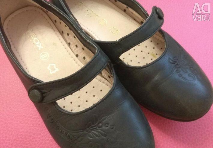 Παπούτσια Geox