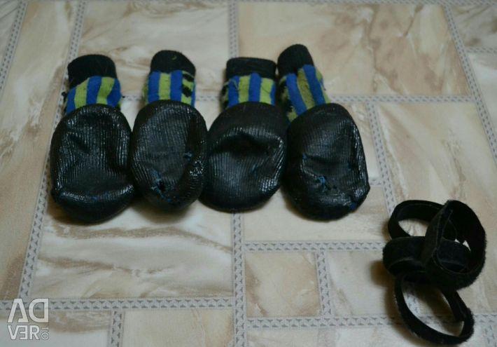 Шкарпетки для ваших вихованців!