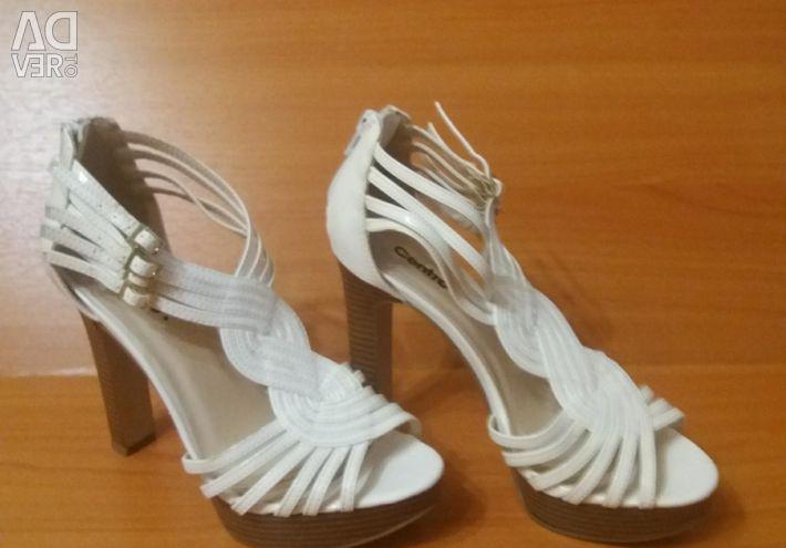 Pantofi Centro