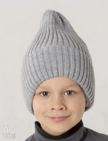 Демисезонные шапочки для мальчика