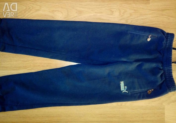 Sports suit height 140-146cm.
