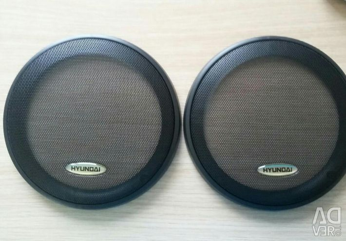 Covers for speakers in the car.