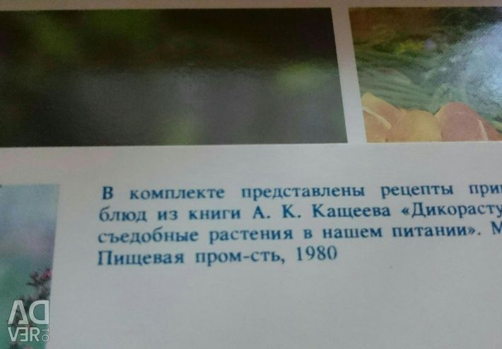 Recipe set 1980g
