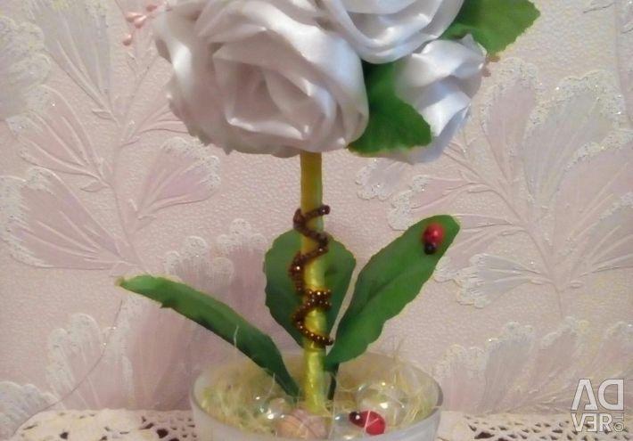 Topiary beyaz gül