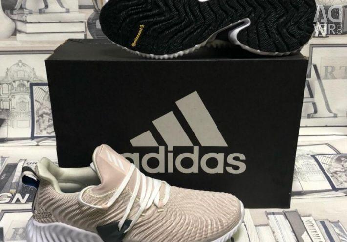 New men's sneakers Adidas